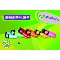 LED Halsband Glow Up