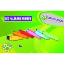 LED Halsband Rainbow