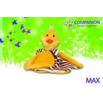 Max | Kuschel- und Spielpartner für Welpen & Kitten