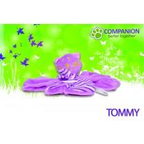 Tommy | Kuschel- und Spielpartner für Welpen & Kitten
